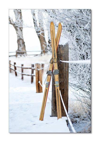 Vintage Skis (50x70 bilde Plexiglass)